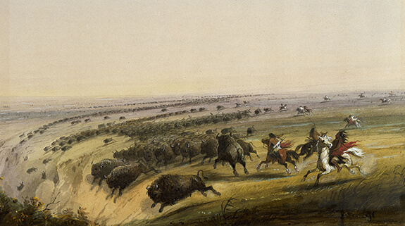 Painting by Alfred Jacob Miller showing a hunting scene. A huge herd of buffaloes are driven towards a precipice