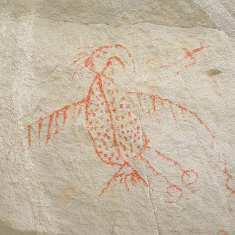Photographie d'une peinture rupestre d'un Oiseau-Tonnerre au grand bec dont le corps est décoré de points, une aile émet des lignes en zigzag.