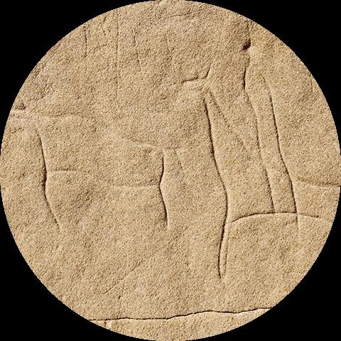 Photographie d'une gravure représentant un homme à cheval pourchassant un bison