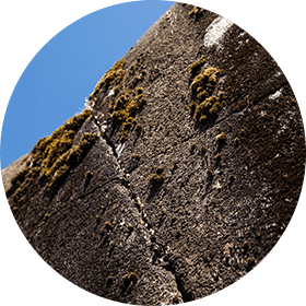 Picture of lichen spreading on the K'aka'win rock