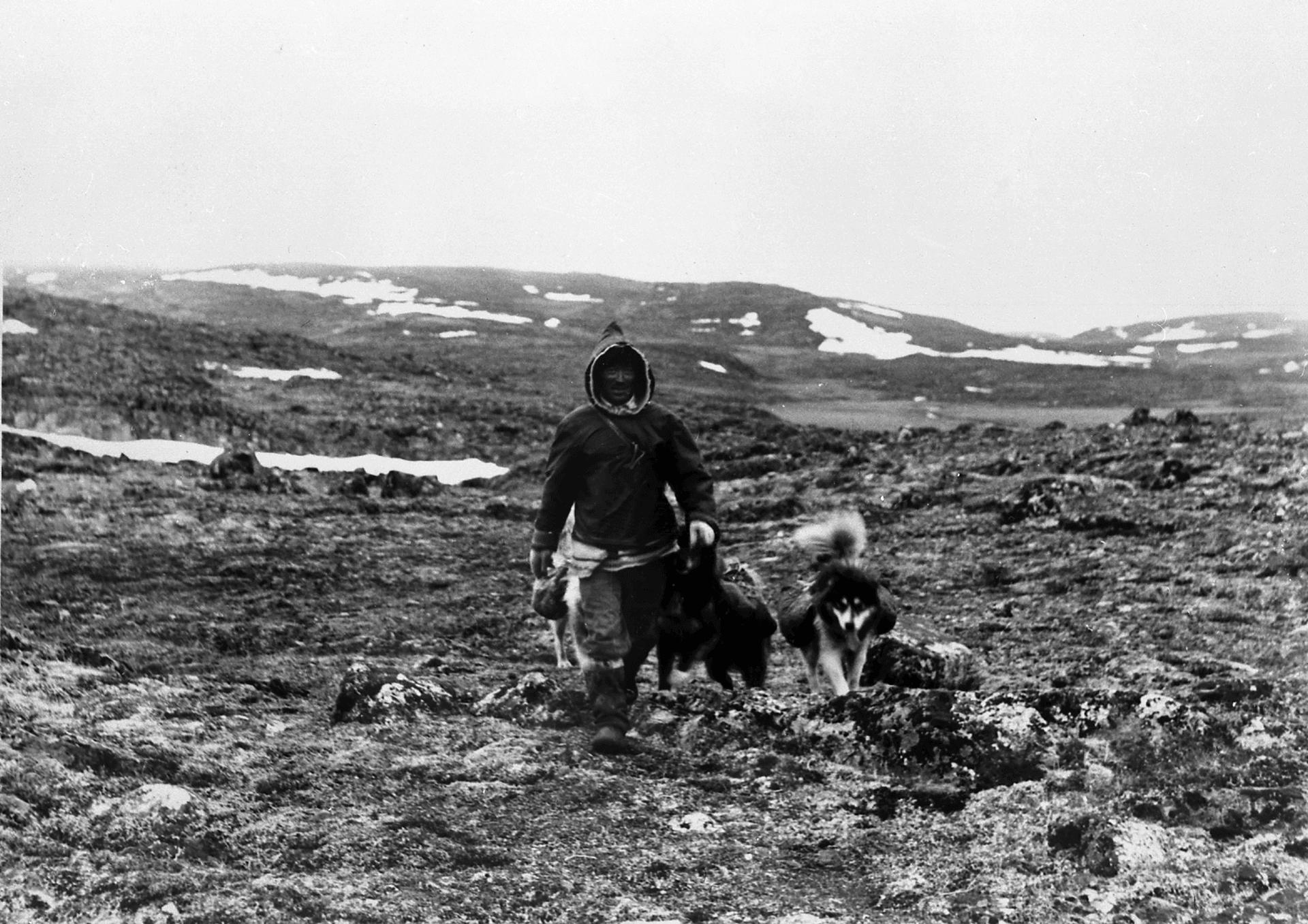 Photographie de Mathew Ningiuruvik, Inuk de Kangiqsujuaq. Kangiqsujuaq, 1960s
