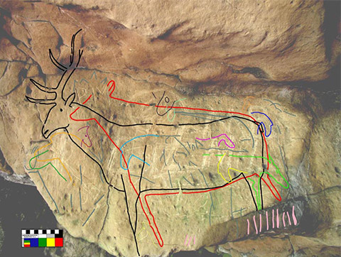 Rock face with engraved lines. In the photo, the outlines of a deer and of horses' heads are drawn with coloured lines to highlight the carvings that are difficult to see.