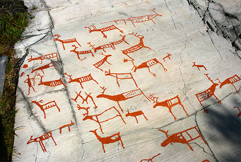 More than 25 reindeer figures and a carving of a human holding a bow are painted in with a reddish pigment on a horizontal rocky surface.