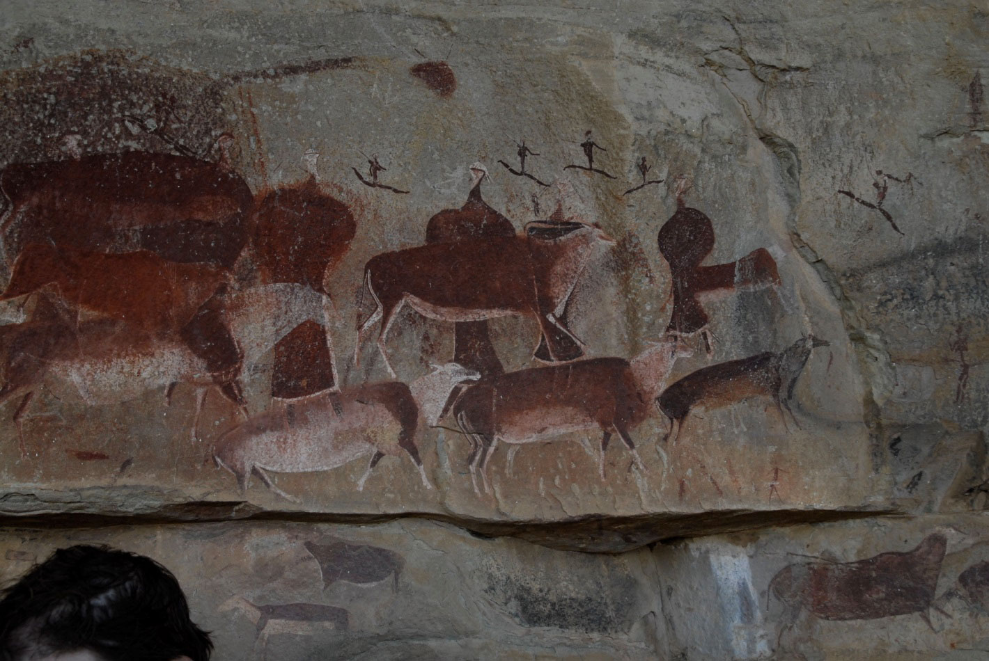 Picture of a site showing polychrome paintings of elands and human figures, in the province of KwaZulu-Natal, South Africa
