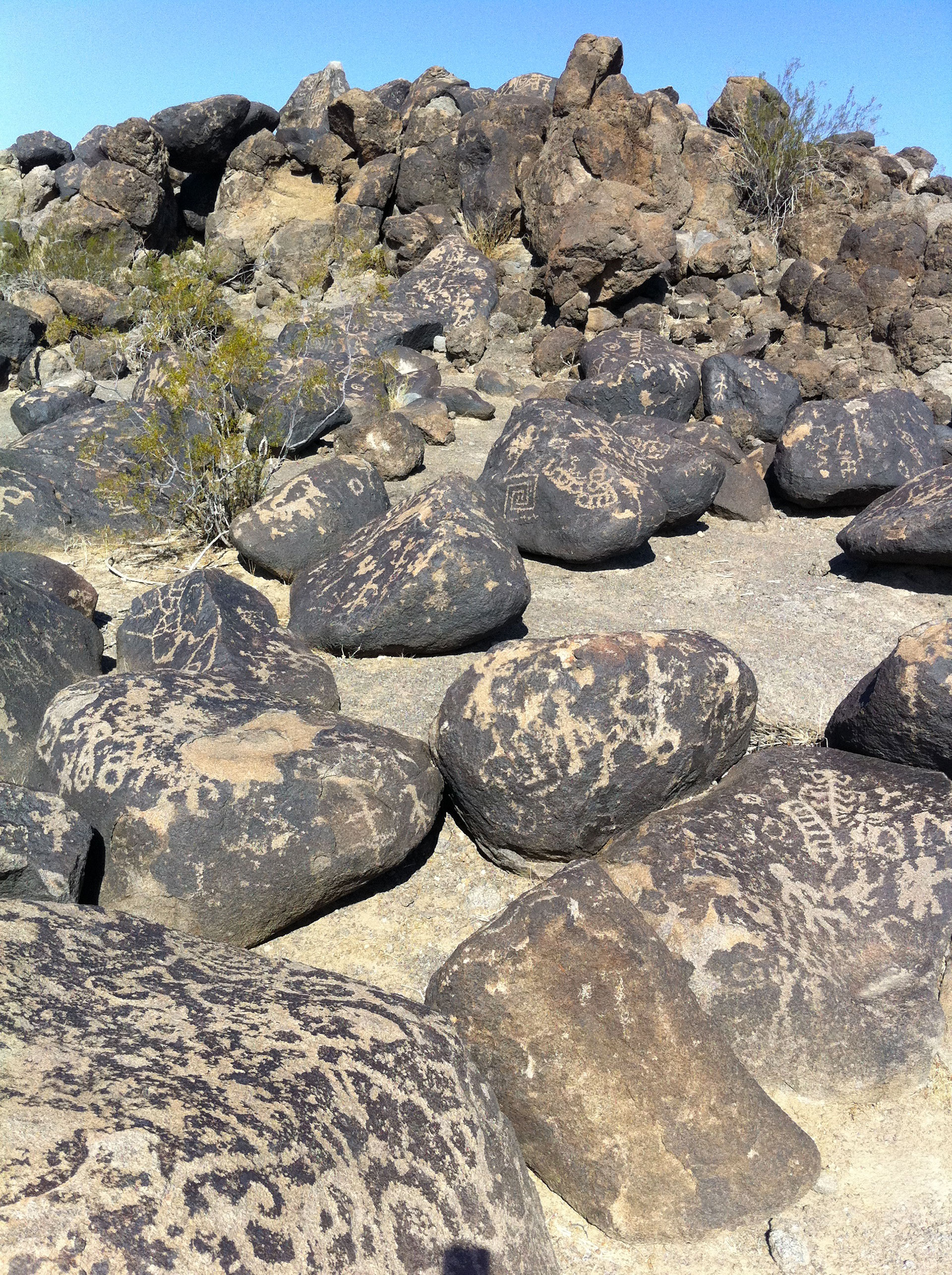Picture of petroglyphs featured on an array of erratic boulders with hybrid figures. Pictograph Rock site, Arizona, United States of America.