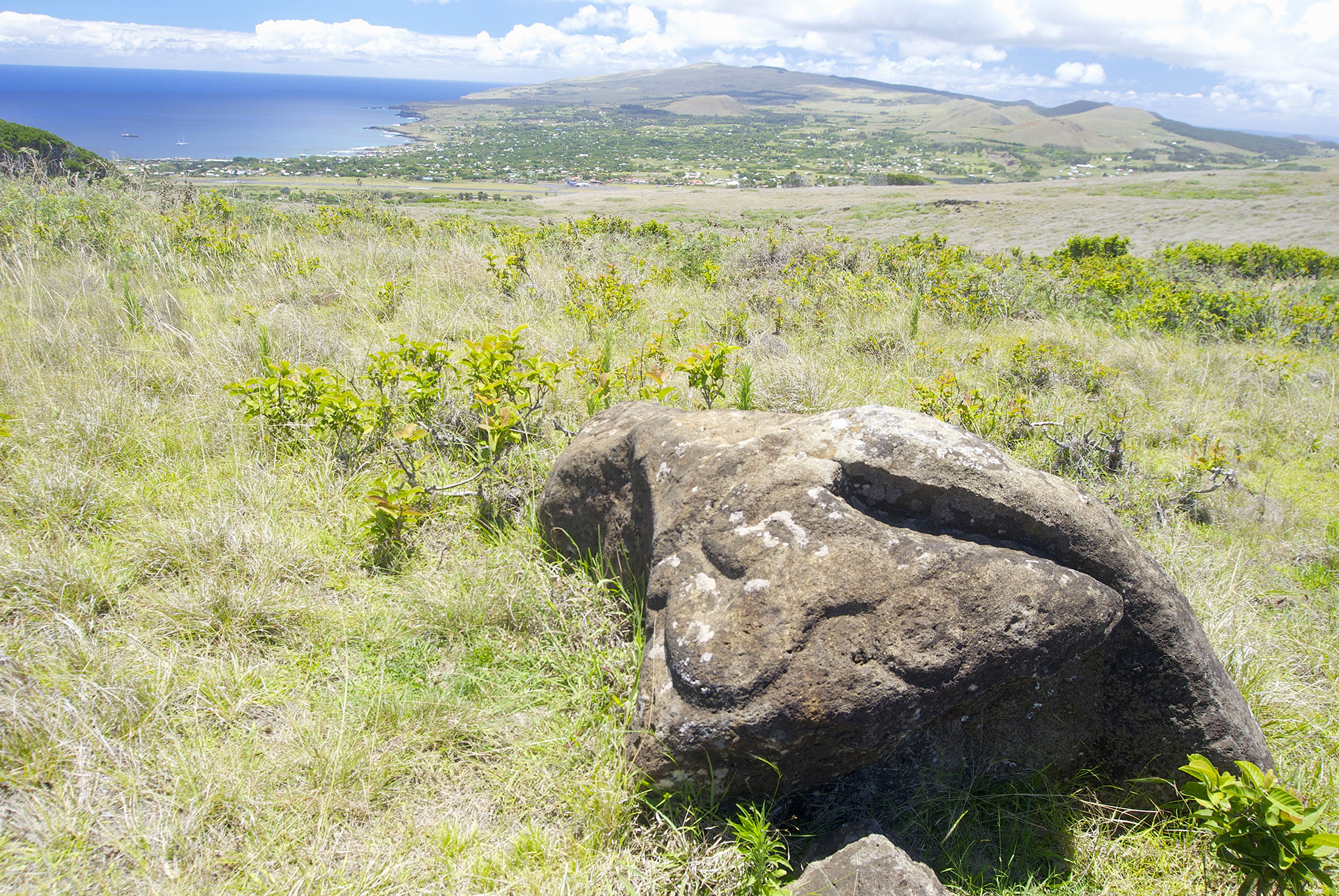 Picture of the Easter Island landscape showing an embossed petroglyph, Rapa Nui site, Chile