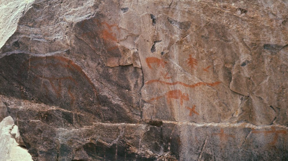 An image of rock art motifs at Stanley-Rapids, Saskatchewan: Bison, a stylized bird and wavy snake-like figures are part of the rich visual repertoire of this site.