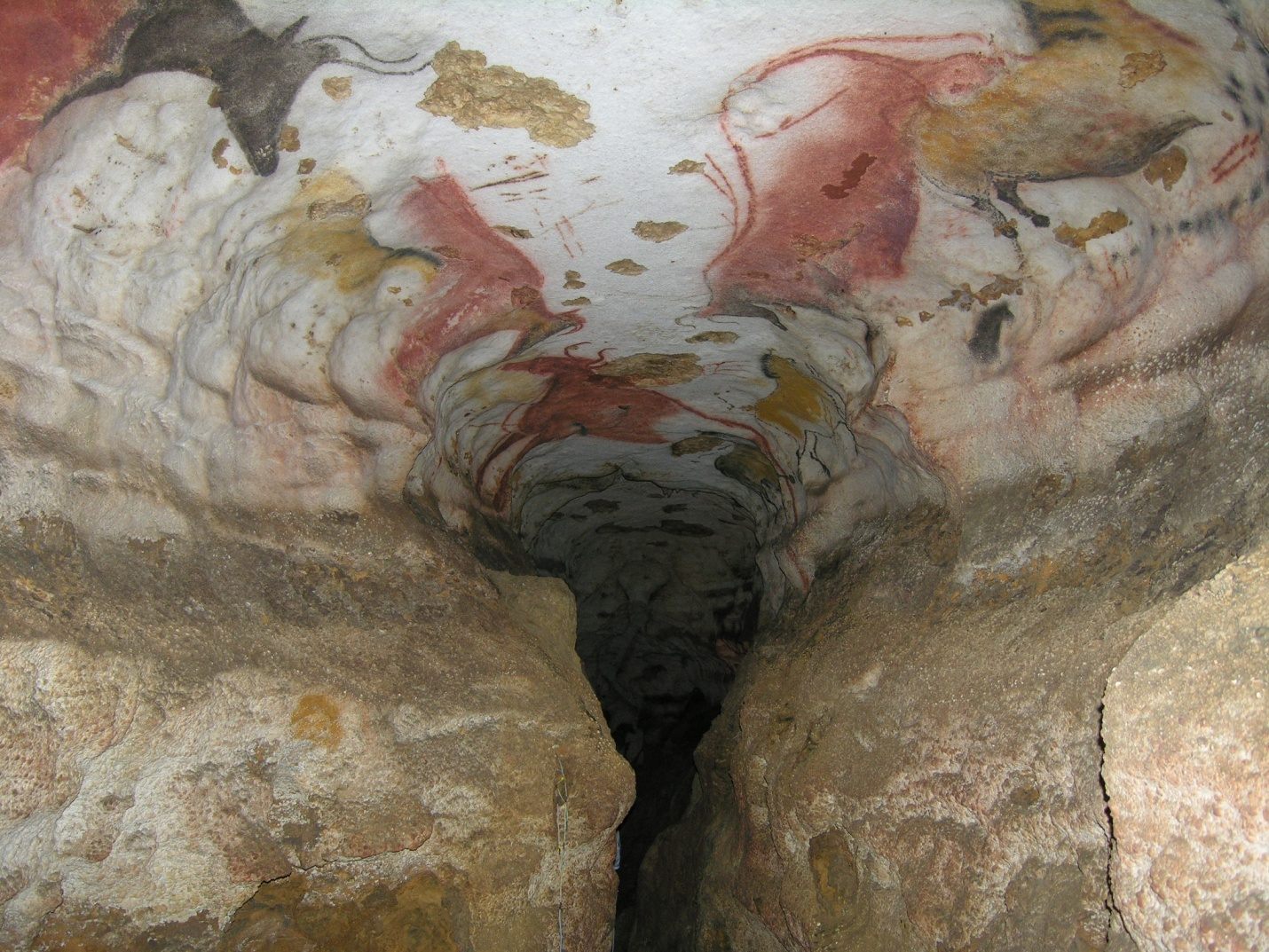 Lascaux cave in France. Shown here is the vaulted ceiling of the entrance to the Axial Gallery, a long passage where polychromatic figurative and geometric motifs were painted; the depicted zoomorphic figures form a bestiary comprised of aurochs and wild horses.